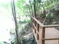 第22回湧水の谷プロジェクト