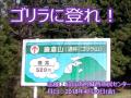 自然体験教室 鎌倉山~展望を楽しむ~ 2018年4月20日 Mt.KAMAKURA TRAIL